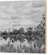 Mill Creek Marsh Serenity Wood Print
