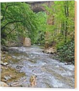 Mill Creek Viaduct Wood Print by Bob Jackson
