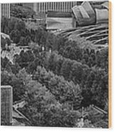 Millenium Park From Above Wood Print