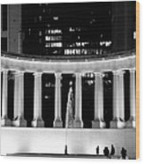 Millennium Monument And Fountain Chicago Wood Print