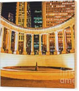 Millennium Monument Fountain In Chicago Wood Print by Paul Velgos