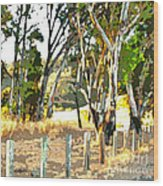 Miller Road Wood Print by Artist and Photographer Laura Wrede