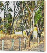 Miller Road Wood Print