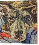 Milo The Lurcher Wood Print