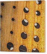 Mind - Evolutions Wood Print by Steven Milner