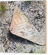 Mine Field Wood Print