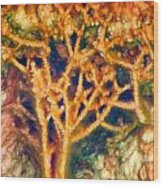 Mineral Branches Hot Springs Wood Print