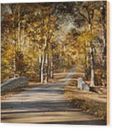 Mingling With Beauty Wood Print