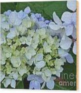 Mini Blue Hydrangea Wood Print