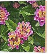 Mini Flowers Wood Print