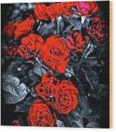 Mini Roses On Walk Wood Print