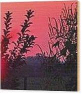 Mini Sunset Wood Print