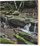 Mini Waterfalls Wood Print by Kaye Menner
