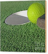 Miniature Golf Wood Print by Olivier Le Queinec