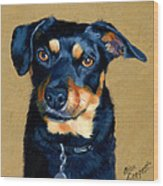 Miniature Pinscher Dog Painting Wood Print