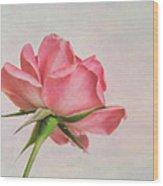 Miniature Rose II Wood Print