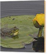 Mink Frog On Lilypad  Wood Print