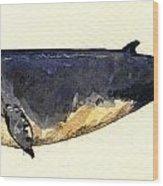 Minke Whale Wood Print