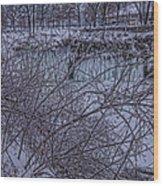 Minnehaha Falls In Fog Wood Print