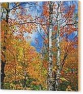 Minnesota Autumn Foliage Wood Print