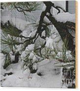 Minnesota Bonsai Wood Print
