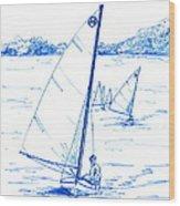 Mint Classic Moth In Blue  Wood Print