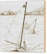 Mint Classic Moth In Sepia  Wood Print