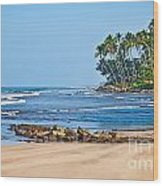 Mirissa Beach Sri Lanka Wood Print