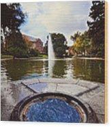 Mirror Lake Wood Print