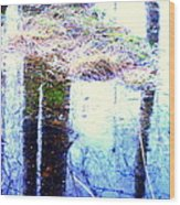Climbing The Mirror Trees Wood Print