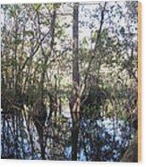 Mirroring The Swamp Wood Print