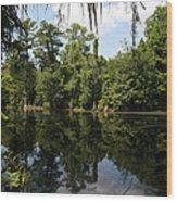 Mirrow Lake - Magnolia Gardens Wood Print