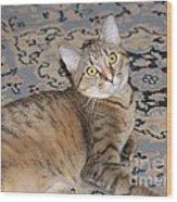 Miss. Gretchen Wood Print