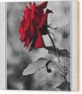 Missing You... Wood Print