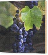 Mission Grapes II Wood Print