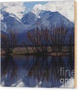 Mission Mountains Montana Wood Print by Thomas R Fletcher