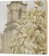 Mission San Jose And Blooming Yucca Wood Print