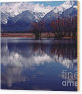 Mission Valley Montana Wood Print