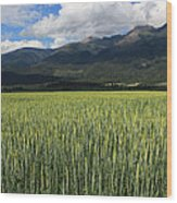 Mission Valley Wheat Wood Print