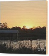 Mississippi Bayou 11 Wood Print