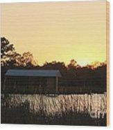 Mississippi Bayou 16 Wood Print