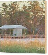 Mississippi Bayou 3 Wood Print