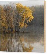Mississippi Color Wood Print