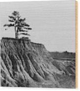 Mississippi Erosion, 1936 Wood Print