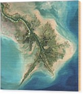 Mississippi River Delta, 2001 Wood Print