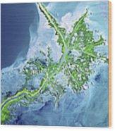 Mississippi River Delta Wood Print