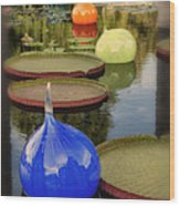 Missouri Botanical Garden Six Glass Spheres And Lilly Pads Img 2464 Wood Print