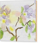 Missouri Dogwood In Watercolor Wood Print