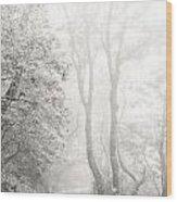 Mist In Madeira Wood Print