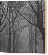 Mist In The Park Wood Print